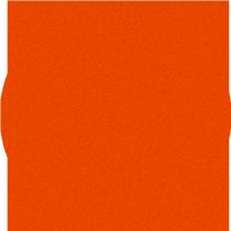 V13R Dazzling orange